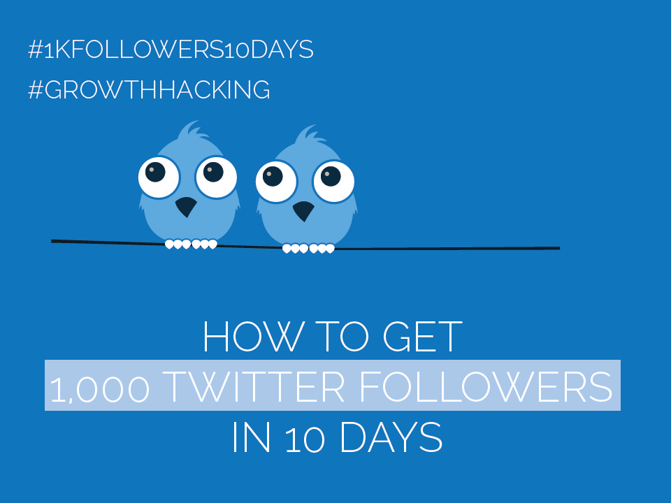 #Twitter Day 2 – Get 1,000 Twitter Followers in 10 Days [#1kfollowers10days #GrowthHacking]